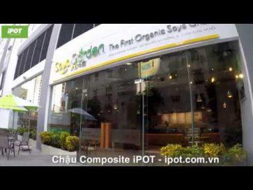 iPOT phân phối chậu cây vào hệ thống đậu nành chuẩn hữu cơ đầu tiên tại Việt Nam