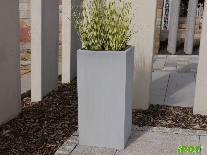 Lựa chọn chậu trồng cây trong văn phòng