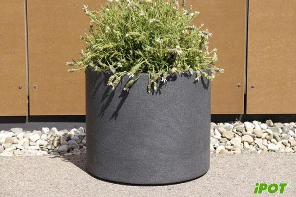 Lợi ích khi trồng cây với chậu Composite?