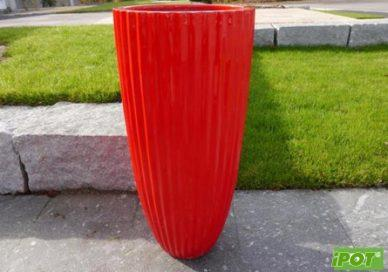 Chậu Compostie tại Hà Nội