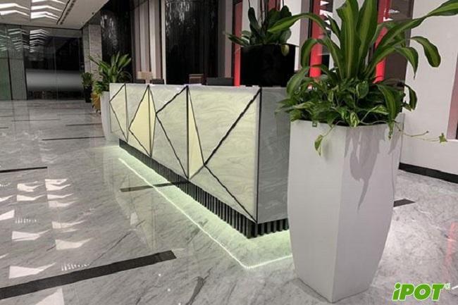 """Tổng hợp mẫu chậu composite vuông tại Hà Nội """"hot"""" nhất hiện nay"""